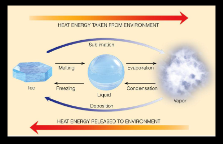 Evaporation and transpiration notes